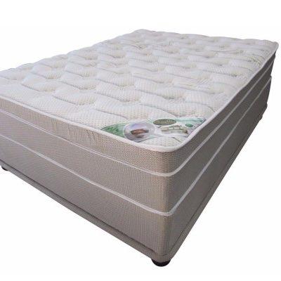 King size memory foam bed-Q-aloe